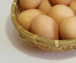 初産み卵 18個セット