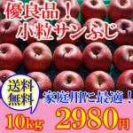 自家用にお買い得なりんご【小玉サンふじ】~まるかじり食べきりサイズ~ 送料無料でお得な10kgです!