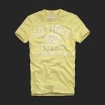 アバクロ/Tシャツ:Summit Rock - Yellow