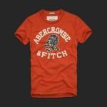アバクロ/Tシャツ:Beckhorn Trail - Orange