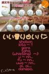 顔文字シリーズ 顔文字白いパンストラップ 4cm 10種類セット (ショボーン  キター!  ゴルァ!  タハッ!  ~♪  ウ~ン  フ~ン  ウワァァァ~ン!!  オイオイ  ダメボ)