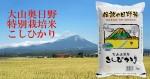 特別栽培米 日野米こしひかり5kg