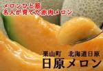 夕張郡栗山町の日原メロン(中サイズ1.5kg以上×2玉)
