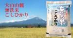 鳥取県 大山山麓 無洗米こしひかり5kg