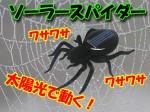 ブラックソーラースパイダー 太陽光で動くクモのおもちゃ 送料350円
