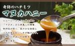 奇跡のハチミツ「マヌカハニー」10+