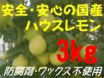 国産ハウスレモン(秀)3kg
