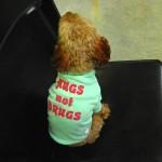 犬 Tシャツ【Hugs not Drugs】