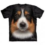 ビッグフェイス プリントTシャツ Australian Shepherd(オーストラリアン シェパード)