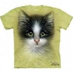ビッグフェイス プリントTシャツ Green Eyed Kitten(ネコ)