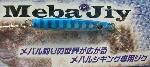 メバジー 3g <ブリス>