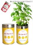リトルガーデン栽培セット ロング缶タイプ 全6種 [6点]