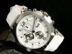 D&G ドルチェ&ガッバーナ 腕時計 クロノグラフ グース DW0101 送料無料