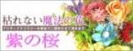 プリザーブドフラワーの事なら紫の桜!